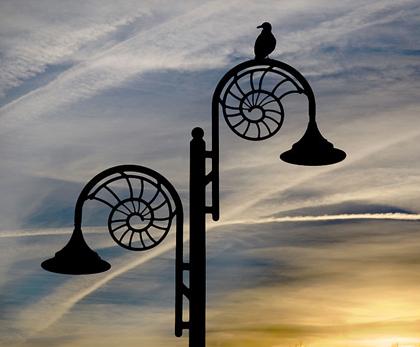 800px-Ammonite_lamp_post_at_dusk,_Lyme_Regis